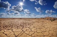 LHQ cảnh báo ba cuộc khủng hoảng môi trường đe dọa con người