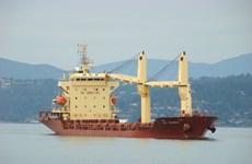 Bình Thuận: Va chạm giữa tàu hàng và tàu cá, 26 thuyền viên an toàn