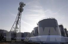 Đa số người Nhật ủng hộ giảm hoặc loại bỏ các nhà máy điện hạt nhân