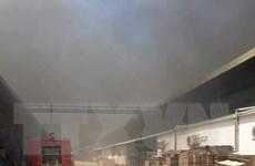 Kịp thời khống chế đám cháy tại công ty may ở Bình Dương