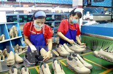 Fitch Solutions dự báo kinh tế Việt Nam tăng trưởng cao 10 năm tới