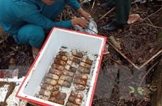 Khắc phục hậu quả bom mìn là ưu tiên của Việt Nam và các đối tác