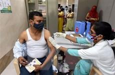 Ấn Độ phát hiện biến thể nguy hiểm mới của SARS-CoV-2 với 3 đột biến
