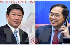 Thúc đẩy quan hệ Đối tác chiến lược sâu rộng giữa Việt Nam và Nhật Bản