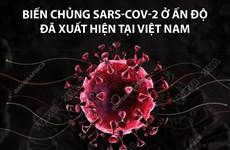 Biến chủng SARS-CoV-2 ở Ấn Độ đã xuất hiện tại Việt Nam