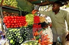 IMF thông qua kế hoạch huy động tài chính tài trợ giảm nợ cho Sudan