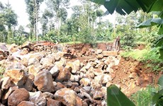 Đồng Nai: Công khai phá rừng khai thác đá trái phép giữa mùa dịch bệnh