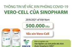 Thông tin về vắc xin phòng COVID-19 Vero-Cell của Sinopharm