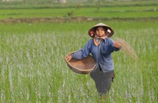 Phát triển kinh tế khi nông thôn đẹp về diện mạo, mới về chất