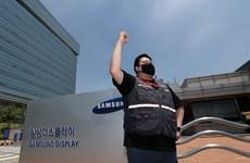Công nhân Samsung Display đình công lần đầu tiên trong lịch sử công ty