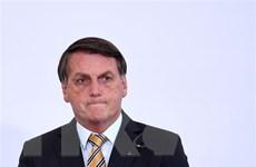 Tổng thống Brazil bị kiện do không điều tra vụ mua vaccine COVID-19