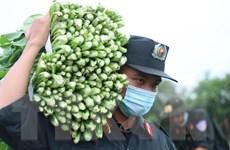 Người dân Đắk Lắk chi viện rau xanh cho vùng tâm dịch phía Nam