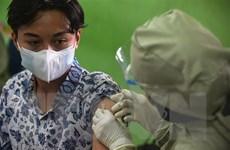 Người dân Indonesia đổ xô mua thuốc ký sinh trùng để chữa COVID-19