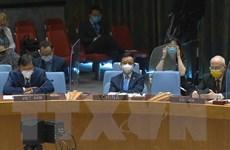 Việt Nam ủng hộ giải pháp chính trị toàn diện, bầu cử đúng hạn ở Libya