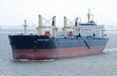 Bình Thuận cho phép tàu MV. Fareast Honesty vào cảng bốc dỡ hàng hóa