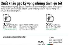 [Infographics] Triển vọng cho xuất khẩu gạo hậu đại dịch COVID-19