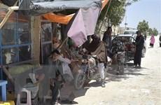 Taliban chiếm Kandahar, thành phố lớn thứ 2 của Afghanistan