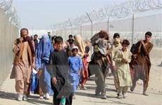 Mỹ đưa 20.000 người Afghanistan sơ tán tới các căn cứ quân sự