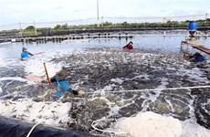 Kiến nghị tăng cường tiêm vaccine COVID-19 cho lao động ngành thủy sản