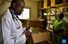 """Bác sỹ Cameroon điều chế """"trà"""" thảo dược điều trị bệnh nhân COVID-19"""