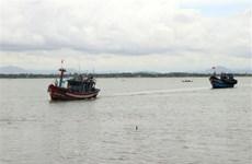 Vẫn còn tàu cá hoạt động trong khu vực ảnh hưởng của bão Côn Sơn