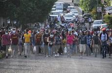 Mexico đã giải cứu thành công hơn 20 người di cư bị bắt cóc