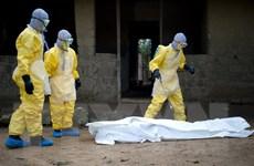 Người phát hiện ra virus Ebola khẳng định căn bệnh đã được kiểm soát