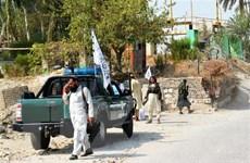 IS thừa nhận thực hiện loạt vụ đánh bom ở Jalalabad của Afghanistan