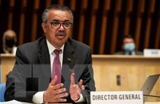 Nhiều nước EU đề cử ông Tedros Ghebreyesus tiếp tục lãnh đạo WHO