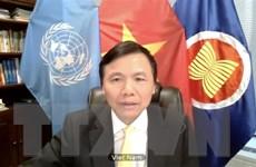 Việt Nam sẽ nỗ lực hoàn thành sứ mệnh cộng đồng quốc tế giao phó