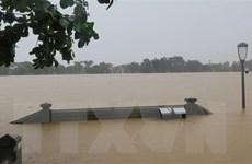 Thừa Thiên-Huế chủ động đưa ra biện pháp phù hợp ứng phó với bão số 7