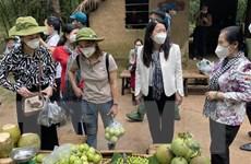 Doanh nghiệp du lịch Nam Bộ tăng cường quảng bá trên nền tảng số
