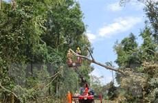 Lưới truyền tải điện phía Bắc đã sẵn sàng ứng phó trước bão số 8