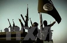 Cộng đồng tình báo nhận định về nguy cơ IS tại Afghanistan tấn công Mỹ