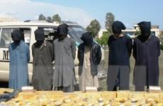 Taliban mở chiến dịch tổng tấn công mùa Xuân tại Afghanistan