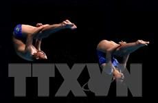 [Photo] Thành tích bất ngờ của vận động viên nhảy cầu Việt Nam