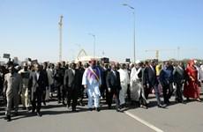 Châu Phi bàn chiến lược chung chống nhóm Hồi giáo Boko Haram