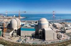 Hàn Quốc tiếp tục vận hành lò phản ứng hạt nhân Wolsong-1