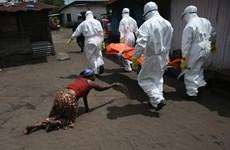 EU tổ chức hội nghị quốc tế về công tác phòng chống Ebola