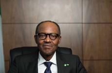 Ông Buhari tuyên bố chiến thắng trong tổng tuyển cử Nigeria