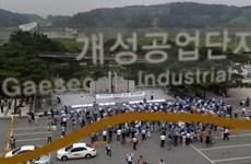Triều Tiên phản hồi tích cực về vấn đề tiền lương tại Kaesong