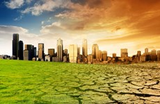 Các nước châu Phi tăng cường hợp tác chống biến đổi khí hậu