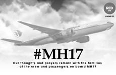 Vụ MH17: Đức biết trước về mối nguy hiểm khi bay qua Ukraine