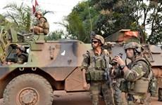 Nhiều nước hỗ trợ thiết lập hòa bình tại CH Trung Phi