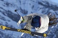 VĐV Thụy Điển bị... tụt quần khi đang thi đấu tại Sochi