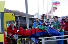 Olympic Sochi: Xe trượt lòng máng đâm gãy chân nhân viên