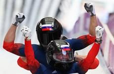 Olympic Sochi 2014: Nga nhất toàn đoàn với 13 HCV