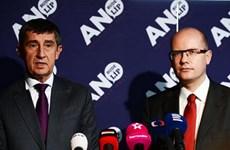 Người giàu thứ hai Séc từ chối tập trung vào chính trị