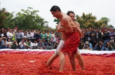 """[Photo] Đấu vật trong bể cà chua """"có một không hai"""""""