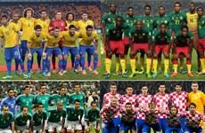 Danh sách chính thức các đội bảng A tại World Cup 2014